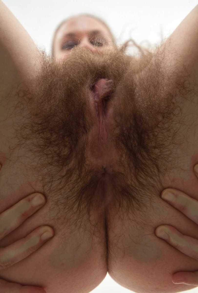 brune poilue chatte (7)
