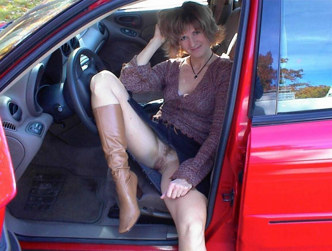 chatte voiture (12)