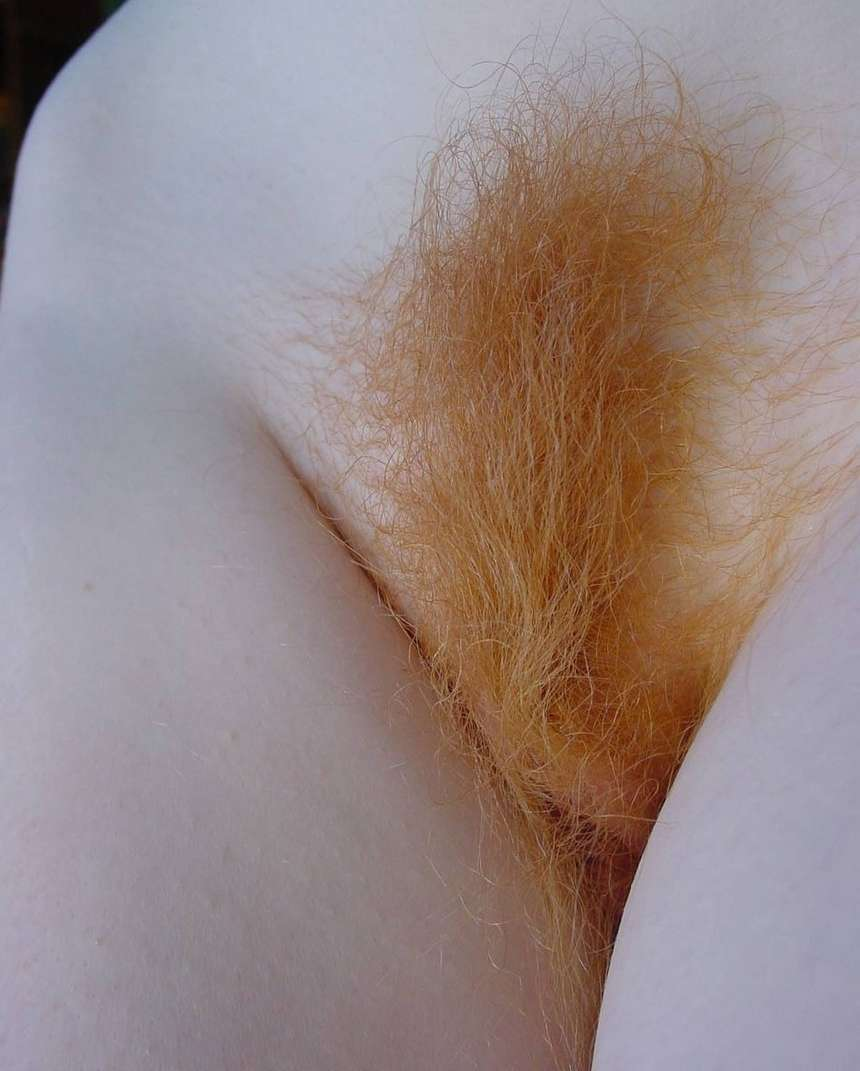 chatte rousse velue (12)