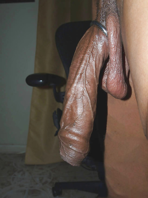 Excellent black cock slutz african big cock