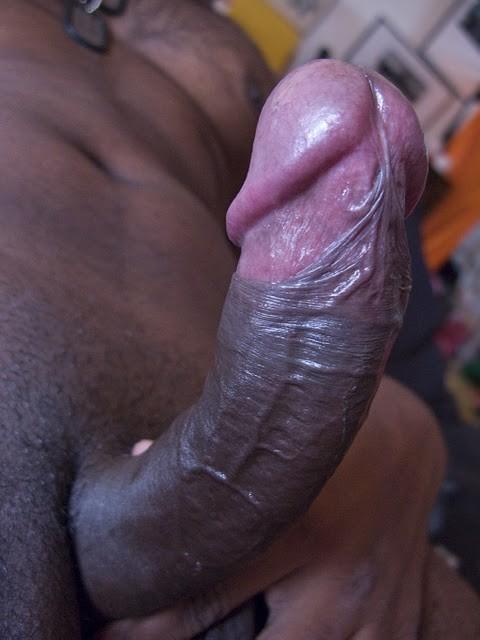 Hé les filles ? Vous aimez les grosses queues blacks ???