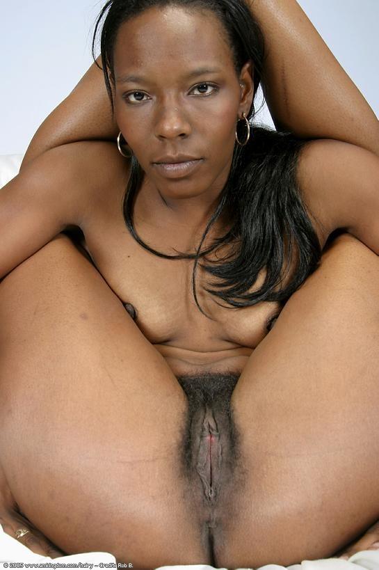 noire poilue (13)