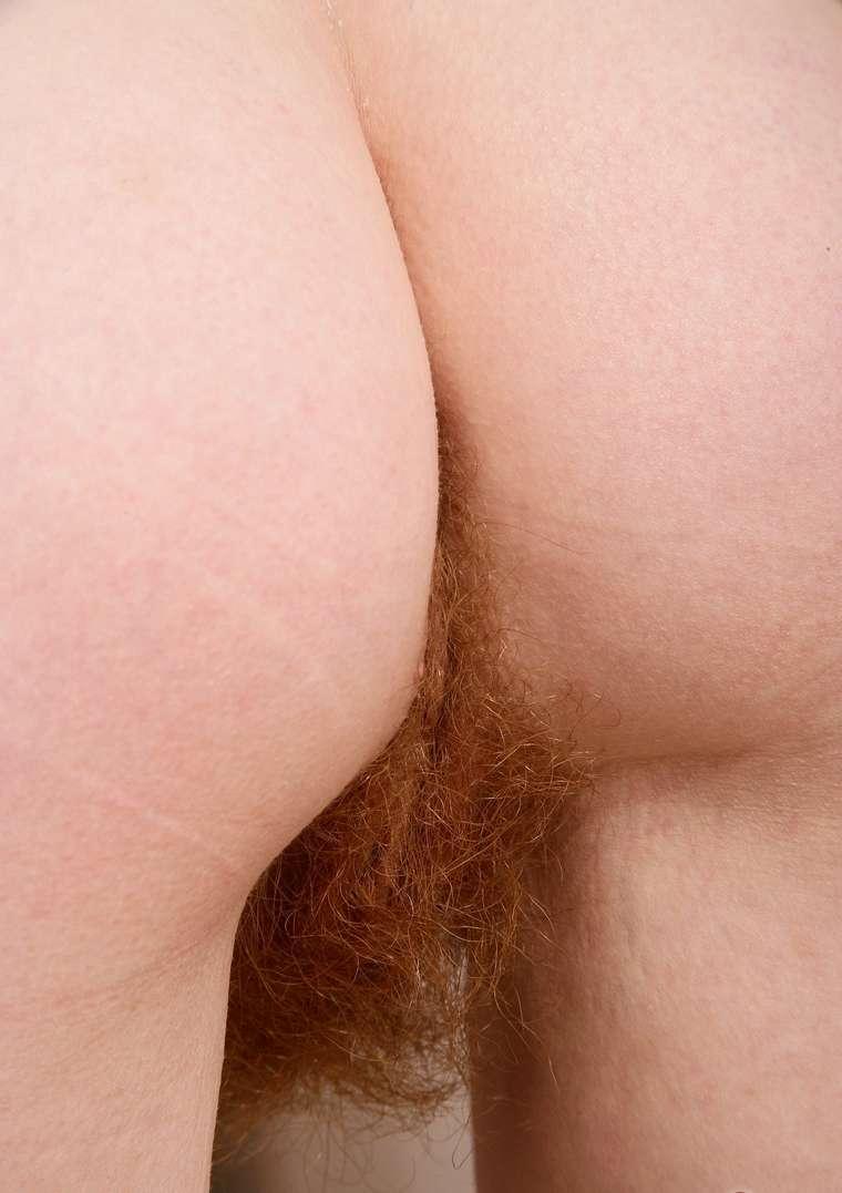 chatte poilue nue (12)