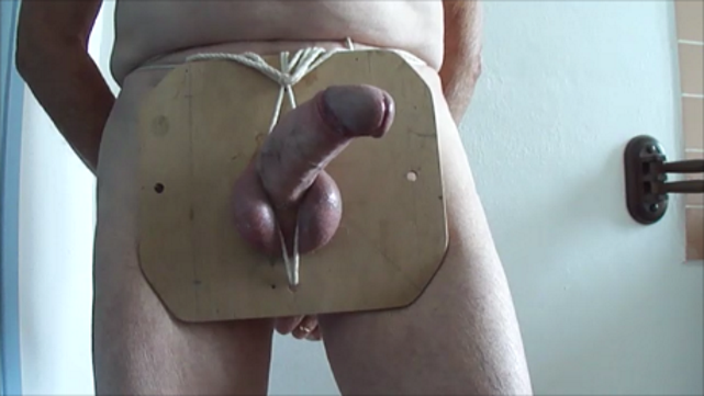 sexe zoophile vidéos sexe gratuit